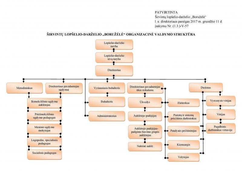 Organizacine valdymo struktura  (2017 11)
