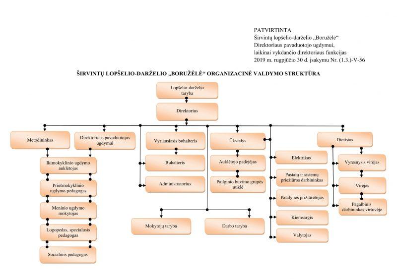 Organizacine valdymo struktura (2019)-1